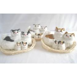 Kočky s koťaty